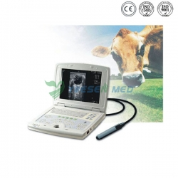 Laptop Veterinary Ultrasound Scanner YSB5000V
