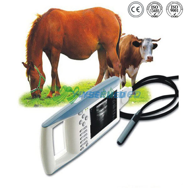 Handheld Veterinary Ultrasound Machine YSB5100V